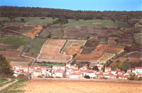 "The village of Boudes and the vines of ""Derrière les Horts"""